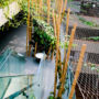 Greening systems in atrium at CSOB 1/2, Prague 5 – Radlice