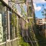 Greening systems in Ceska pojistovna 1/3, Prague 4 - Pankrac